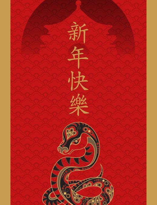 Happy Lunar New Year 2013!